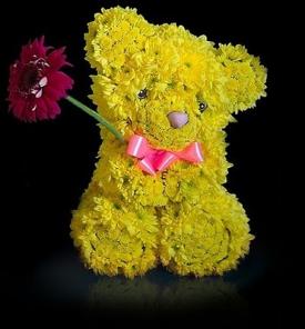 Медведь из хризантем