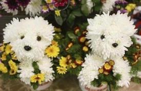 Щенок из цветов